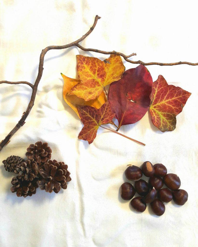 tris-elementi-naturali-autunno